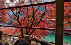 Sagano Scenic Line (bacon.dumpling) Tags: arashiyama autumn fallfoliage fujifilmxpro2 fujinonxf16mmf14rwr japan koyo kyoto leafchangingseason saganoscenicline