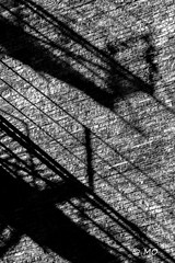 Shadow stalker (mathieuo1) Tags: chicago urban city pedestrian art architecture artistic abstract wall shape shadow sharp street bnw monochrome usa travel explore nikon zoom contrast graphic lines geometry natgeo composition photography blackandwhite dark illumination light strong midday stairs escape raw straight mathieuo