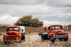 Lost (Pedalhead'71) Tags: abandoned ghosttown hardman oregon rural truck heppner unitedstates us