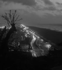 The Great Highway, San Francisco (Flick'gAbility) Tags: blackandwhite rainyday evening leaflessbranches road cars lights city clouds sky greathighway oceanbeach pacificocean viewfromsutroheightspark sanfrancisco canoneos5dmarkiv canonef50mmf14usm