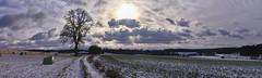 Erster Schnee im neuen Jahr (Helmut Reichelt) Tags: winterruhe winterland wolken schnee felder januar winter schwaigwall geretsried bayern bavaria deutschland germany leica leicam typ240 captureone12 colorefexpro4 leicasummilux35mmf14asphii panorama