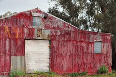 Big Red (holly hop) Tags: shed barn red tin corrugatediron starnaud farm rural ruraldecay rust rustyandcrusty decay