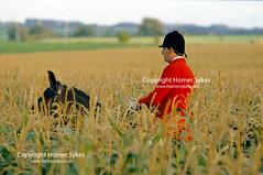 MAN FOX HUNTING ON HORSE (Homer Sykes) Tags: valeofwhitehorse foxhounds hounds foxhunting master hunt hunters fieldsport ridingout travelstockuk britain uk british england english archivestock upperclass britishsociety society man men 1980s 80s gbr