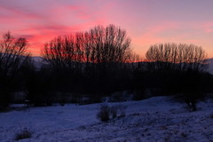 Sunset (tatranka7) Tags: sunset evening trees landscape atmosphere winter snow sky