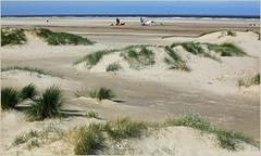 Sur la plage de Zeebruges, Belgium (claude lina) Tags: claudelina belgium belgique belgië zeebruges mer sea merdunord noordzee bruges plage sable cabine dunes oyats