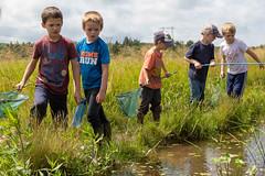 _MG_3902.jpg (joanna.mills) Tags: pond roachville tirnanog net henry diabetesnb friends forestschool livewell play bienvivre
