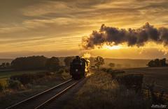 Golden age of steam (Nimbus20) Tags: evening light golden steam train smoke mist fields england