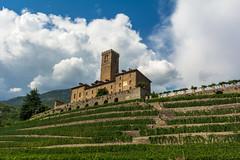 Castello di Sarre (ste.cavi92) Tags: castello aosta architettura storia nikon valle montagna