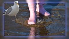 The Gullbootscrab (andantheandanthe) Tags: creativity close up macro trix photoshop adobe sea gull seagull boots pink beach crab water