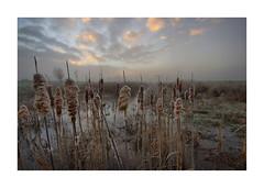 Sunrise Waterdonken Breda 04 (cees van gastel) Tags: ceesvangastel canoneos550d clouds sigma1020mm landscape landschap luchten natuur nature nederland netherlands noordbrabant breda water winter waterdonkenbreda waterakkers wolken sunrise zonsopkomst mist horizon einder