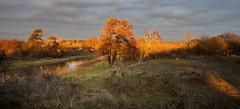 20181212-1600-22 (Don Oppedijk) Tags: bentveld noordholland nederland nl amsterdamsewaterleidingduinen awd sunset cffaa
