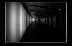 Guardian Angel (blueP739) Tags: om4 olympus om1n olympusom om3ti om2sp om10 om1 om2n om3 om olympusom1 orange olympusplustekplustek7200om4 pussy plustek7200 plustek scanner kingscross angel guardianangel subway railwayline monochrome bw blackwhite noiretblanc noir