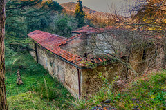 old abbey (lotti roberto) Tags: abbey eremao livorno colline ruins rovine