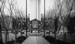 Reflection - Film Leica (Photo Alan) Tags: reflection blackwhite blackandwhite street streetphotography streetfilm film filmcamera filmscan filmleica leicamp tree trees vancouver canada monochrome