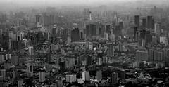 mega city