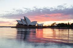 Opera-House (Ross Walden) Tags: longexposure sunrise nsw sydney harbour water clouds