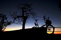 Grand Canyon Sunset (Shu-Sin) Tags: velo shusin raleigh twenty folding bike bicycle travel touring tourer randonneur randonneuse tree sunset crecent moon arizona desert sky blue clear silhouette