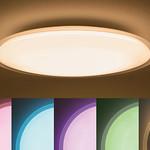 住宅用照明器具の写真