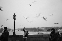 Birds over the Charles Bridge (bitrot) Tags: bw birds bridge charlesbridge czechrepublic czechia europe grain karlůvmost lamp lamppost light prague sky tourists winter wiver lightroom canoneos5dmarkiii ef1740mmf4lusm 40mm f40 130sec iso250