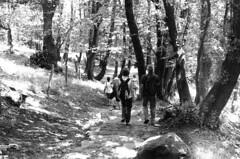 Ponte tibetano - 04 (bumbazzo) Tags: carasco carasc swiss svizzera montagna montagne mountain mountains ragazza ragazze modella modelle donna donne girl girls woman women model models amici friends group gruppi portrait portraits ritratto ritratti bn bianco nero bianconero bw black white blackwhite analog analogico film pellicola ilford fp4
