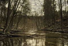 Lyna river (grzegorzmarek) Tags: rokkor 28mm 28 28mm28 minolta md ilce7 lyna river rus olsztyn