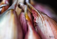 Playing with the garlic again (noel_upfield1) Tags: garlic macro ©noelaupfieldpixlbypixlphotography