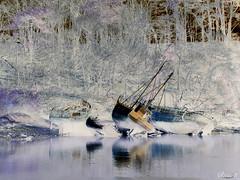 Cimetière de bateaux (Assouende) Tags: cimetière bateaux bretagne finistère douarnenez