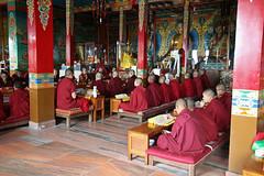 262. Interior, Nagi Gompa (Nunnery), Shivapuri Nagarjun National Park, Kathmandu, Bagmati State, Nepal) (Jay Ramji's Travels) Tags: nepal kathmandu shivapurinagarjunnationalpark bagmatistate northkathmanduvalley nagigompa nunnery buddhism buddhist religious placeofworship monks women statues