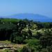 Isola d'Elba da Populonia, Toscana