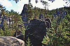 rocks and trees :) (green_lover (I wait for your COMMENTS!)) Tags: rocks trees adršpašskoteplickéskály czechrepublic nature landscape green travels