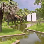 Remembering a trip to the National Botanical Garden of Cuba (in Havana) thumbnail