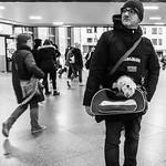 Dog In A Bag thumbnail