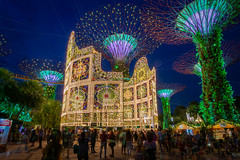 Christmas Wonderland (BP Chua) Tags: gardensbythebay singapore asia supertrees luminaire bluehour tourism tourist wideangle people nikon d800e