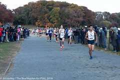 2018.11.10_CROSSCNTRY_WomensMens_VanCortlandtPark_JesiKelley-830 (psal_nycdoe) Tags: menscrosscountry nycpsal nycpsalsports nycsports newyorkcitypublicschoolsathleticleague psal2018crosscountry psal2018crosscountrychampionships psalcrosscountry teenagersplayingsports womenscrosscountry highschoolsports kidsplayingsports 201819 cross country psal public schools athletic league van 201819crosscountrycitychampionships xtry xcountry nycdoe new york city high school championships vancortlandtpark cortlandt jesi kelley jessica nyc newyorkcity newyork usa department education boys girls championship