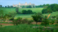 Castle on the Hill (kate willmer) Tags: castle hill fields trees green landscape tuscany italy