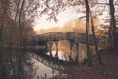 Herbst im Steinfurter Bagno (Light and shade by Monika) Tags: light autumn see brücke münsterland steinfurt farben