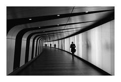 FILM - Five (fishyfish_arcade) Tags: analogphotography bw blackwhite blackandwhite filmphotography filmisnotdead istillshootfilm ilfordhp5plus monochrome nikkor2880f3556afd nikonf70 analogcamera film mono streetphotography london
