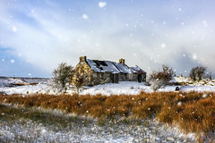 🎄 Merry Christmas & Best Wishes from Ireland 🎁 (Gareth Wray - 12 Million Views, Thank You) Tags: old abandoned house cottage famine winter snow snowing quadcopter northern ireland ulster ni uk scenic landscape sperrins sperrin county tyrone gareth wray photography strabane nikon nikkor sky spring sun plumbridge traditional set tourist tourism site visit countryside country side scape grass frosty british sunset irish colourful ballentine hills photographer home vacation holiday europe farm homestead stead rise plumb outdoor field 70200mm tree d810 mountain forest