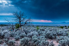 Sunset Storm (LarryJH) Tags: taos taosoverlook sunset trees herscovitch larry newmexico clouds landscape nature 5dmarkiv canon americansouthwest