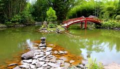 Jardín Lankester (714212835) Tags: landscape nature bridge paisaje lago water canon t3i 600d puente relajante relaxing