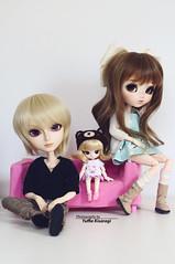 Family Potrait (·Yuffie Kisaragi·) Tags: doll dolls pullip wind custom yuzuaesthetics nayame taeyang miokit meilachan adam littledal chacha zoar obitsu rewigged rechipped