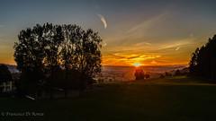 sunrise 4.)1809-453 (dironzafrancesco) Tags: ostschweiz sunrise landschaft nature himmel outdoor imfreien natur sonyfe1635mmf4zaoss bäume trees sonyilce7r2 lightroomcc sky landscape clouds wolken sonnenaufgang sirnach kantonthurgau schweiz ch