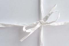 Macro Mondays - White on White (christiane.harrison) Tags: macromondays whiteonwhite bow white monochrome