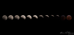 Totality January 20, 2019 (Brian D' Rozario) Tags: newyork unitedstatesofamerica brian19869 briandrozario luna lunar eclipse blood moon super satellite natura sequence sequel bloodmoon wolf night astronomy astronomical phase phases 2019
