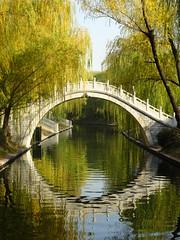 Full Circle (sharon.corbet) Tags: willow 2018 autumn purplebamboopark zizhuyuanpark canal china beijing bridge