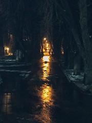 Нічне🌒 #ukraine #kyiv #autumn #night #streetphotography #lantern #lamp #goodnight #nightphotography (tetianaberezenko) Tags: ukraine kyiv autumn night streetphotography lantern lamp goodnight nightphotography