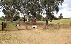 41 Dairymans Lane, Young NSW