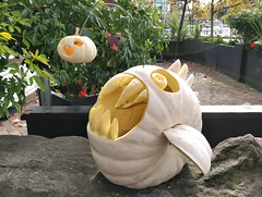 Could this be the best Halloween pumpkin ever carved? (Ruth and Dave) Tags: ancora seawall yaletown falsecreek vancouver halloween pumpkin jackolantern lantern anglerfish scary monster fish hunting angling carved teeth jaws creative