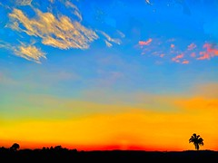 Nature Sky like a flag (EDUARDOZEA) Tags: xsmax iphone nature nice colors sunset clouds cluds panorama cerritos valle cartago colombia flag sky palm
