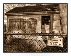 Please Curb Your Dog (Timothy Valentine) Tags: large 1218 sign friday 2018 fence eastbridgewater massachusetts unitedstates us